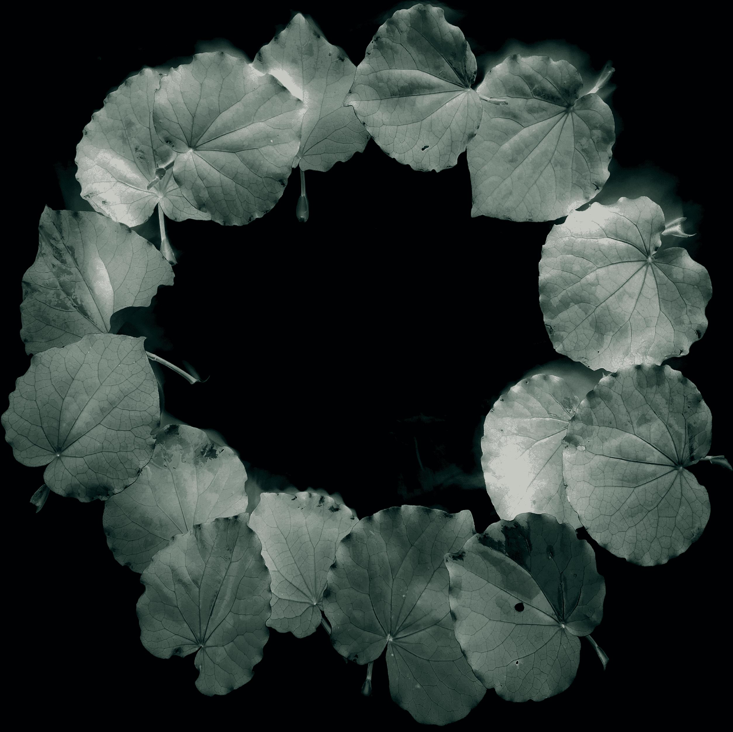 comemorative wreath